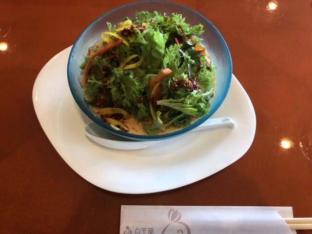 サラダ冷やし麺